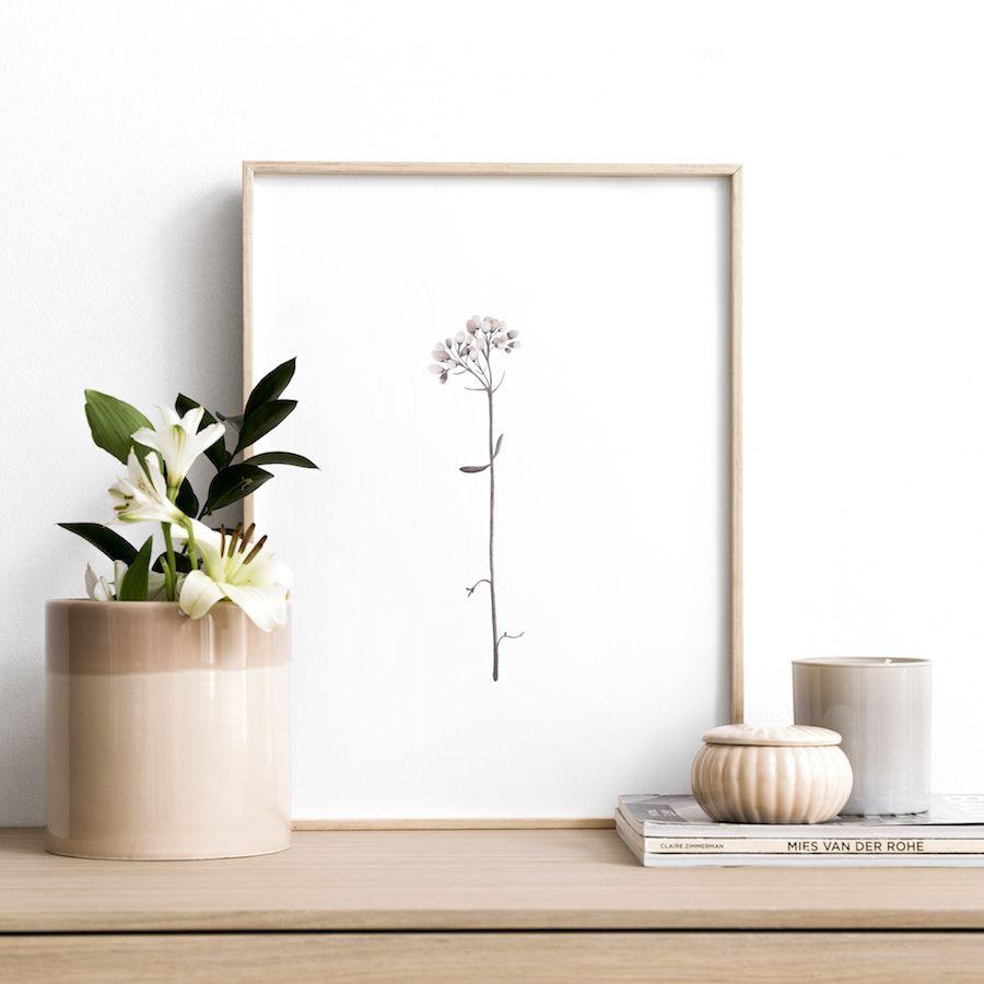 Botánica Bloom lámina