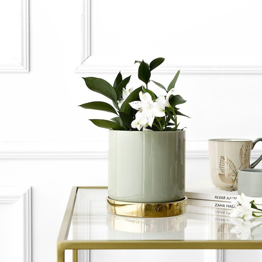 Denn vaso verde