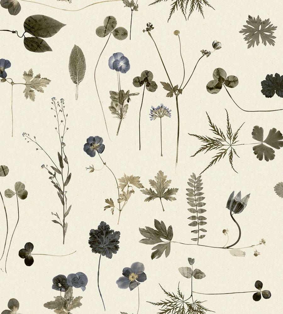 Simplicity botánica wallpaper