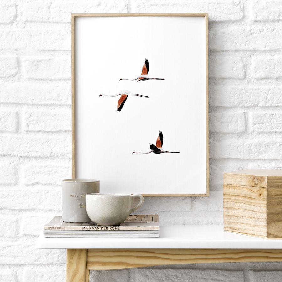 Natura bird lámina 30x40 cm