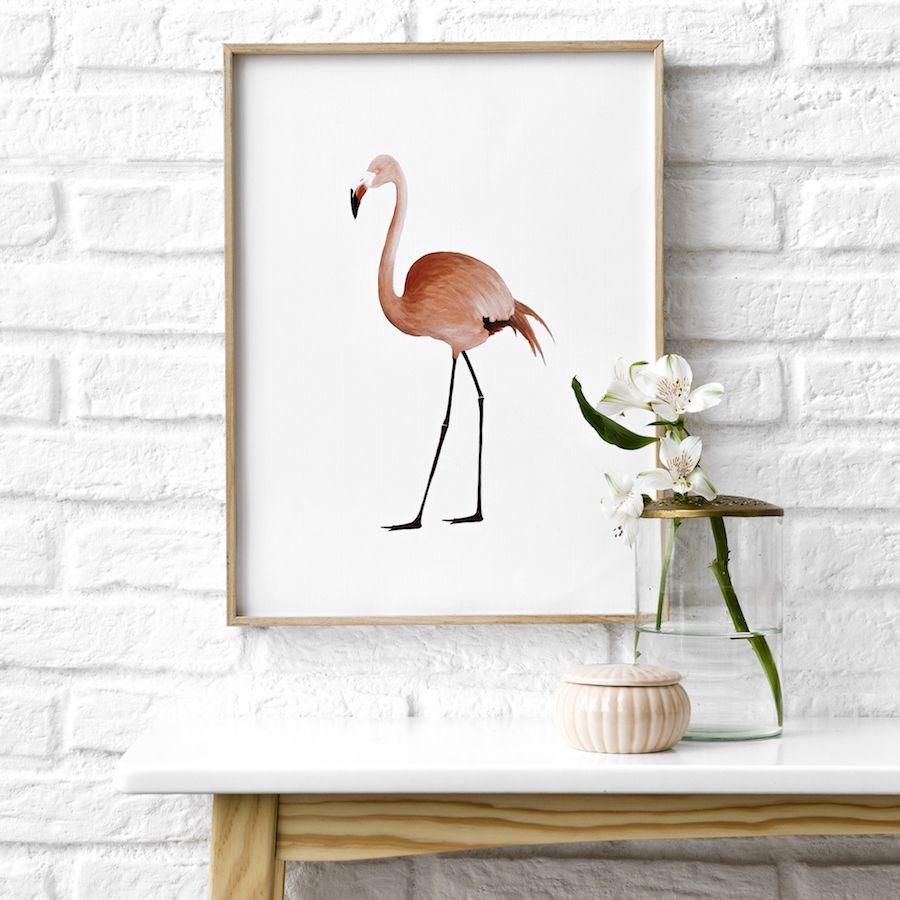 Natura Flamingo stampa