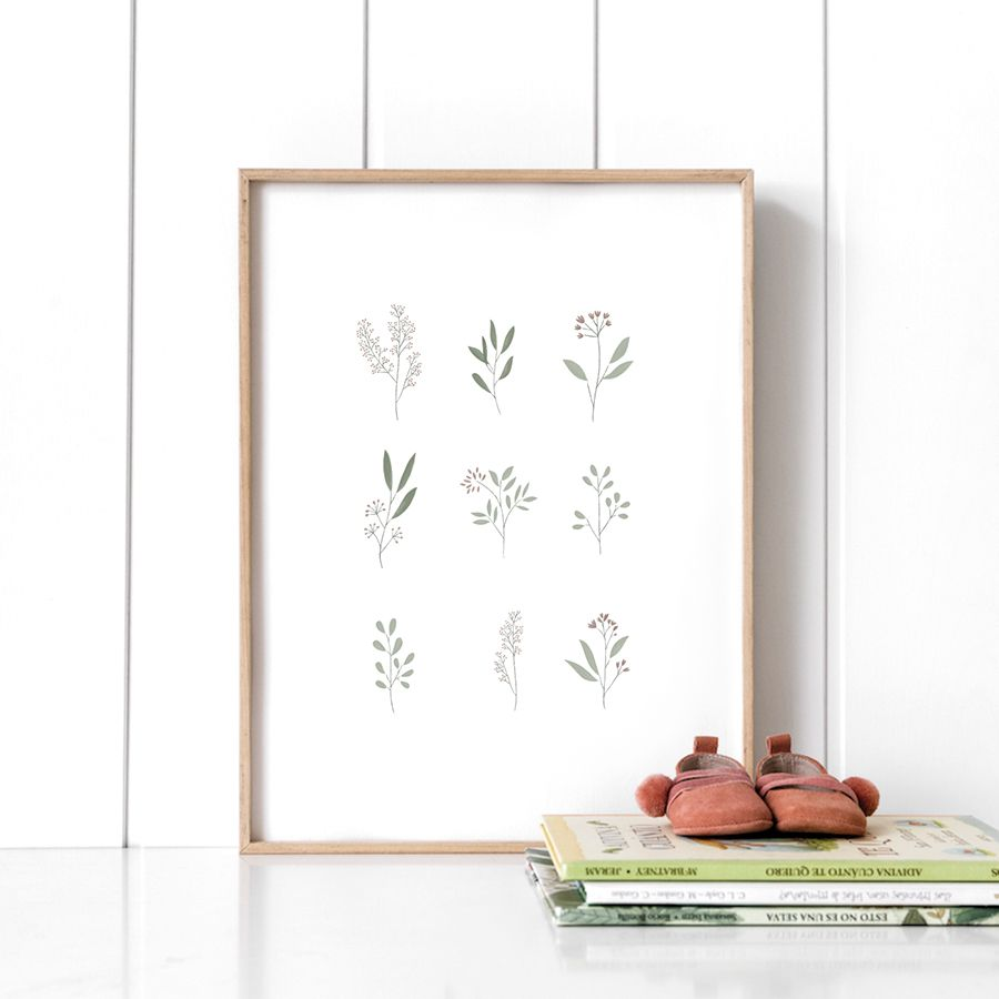 Botánica stampa